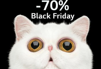 BLACK FRIDAY w LG -70%